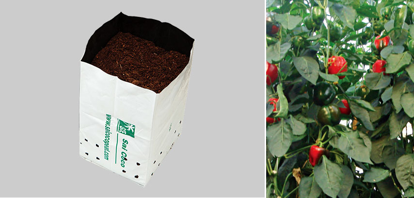 Coir/Cocopeat Opentop Growbags